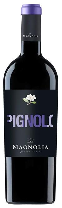 Pignolo