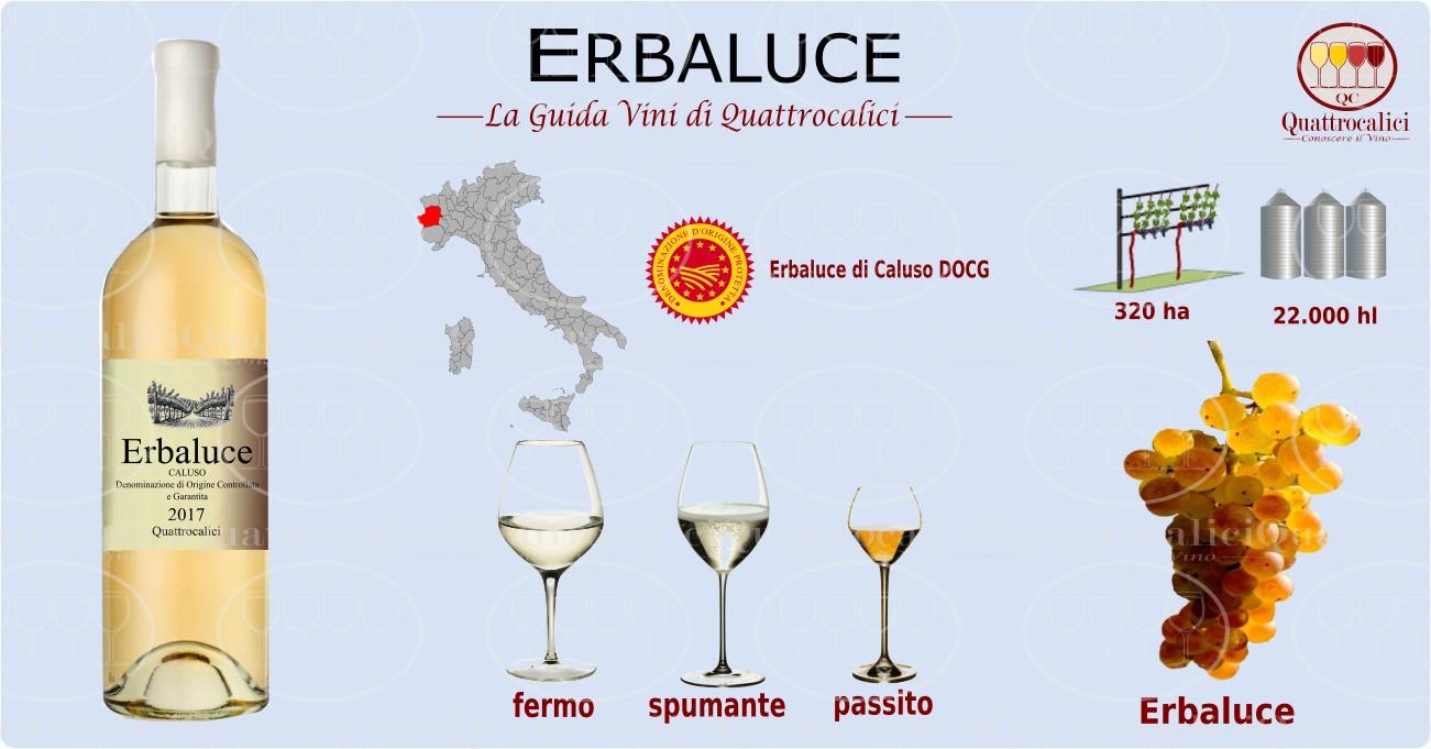 erbaluce vini
