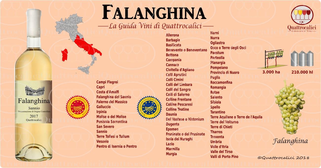falanghina-vini