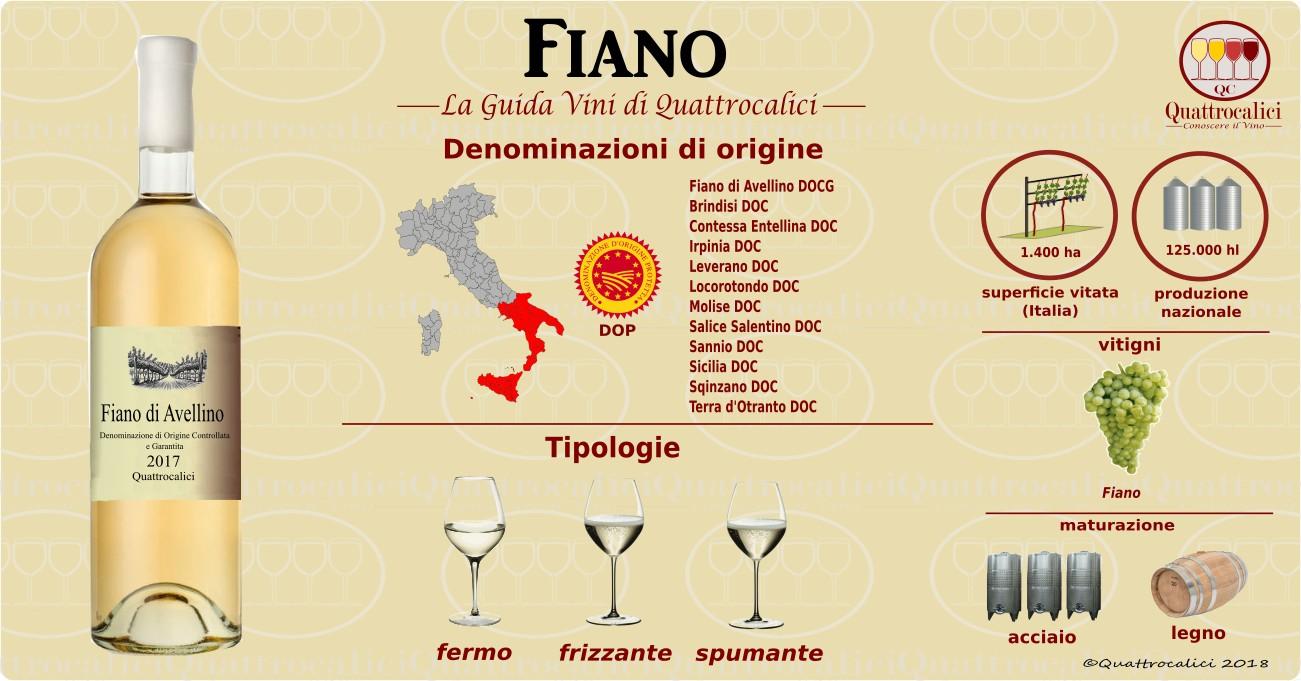 fiano-categoria vino