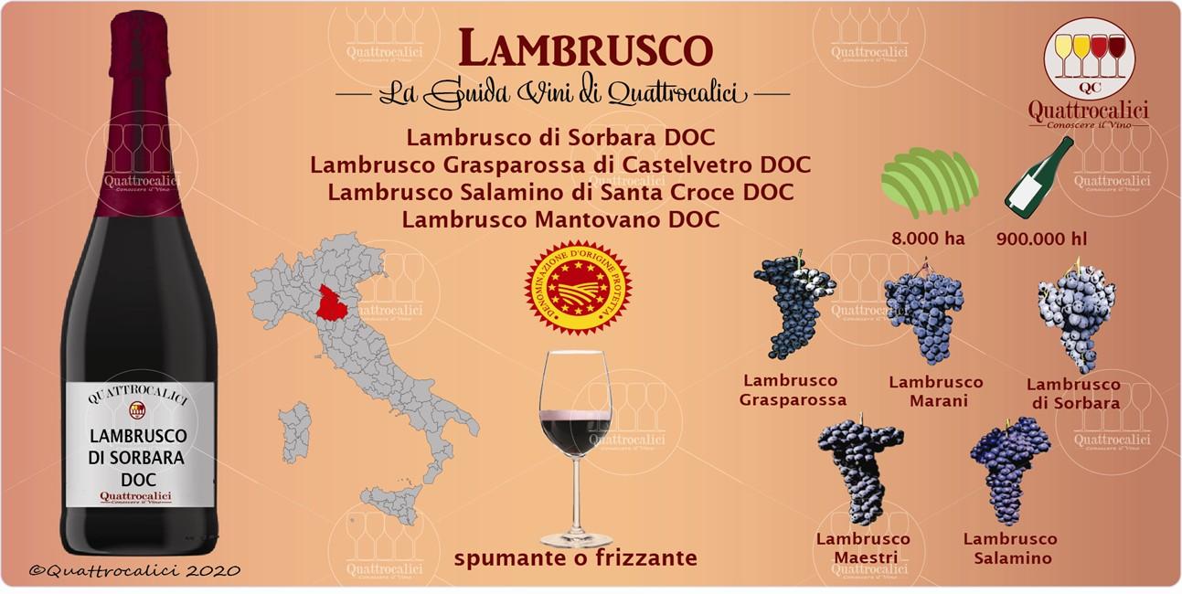 lambrusco guida vini