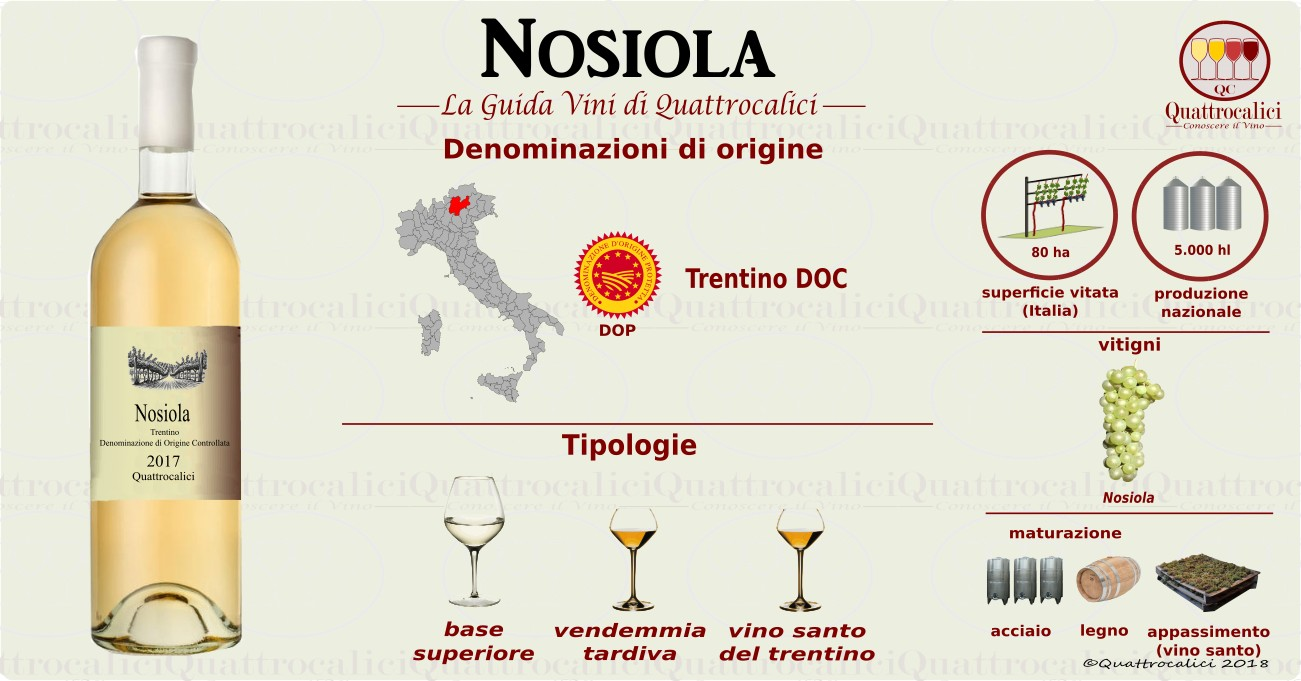 nosiola vini