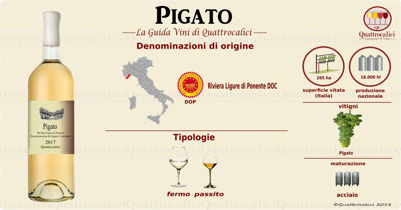 pigato-vini