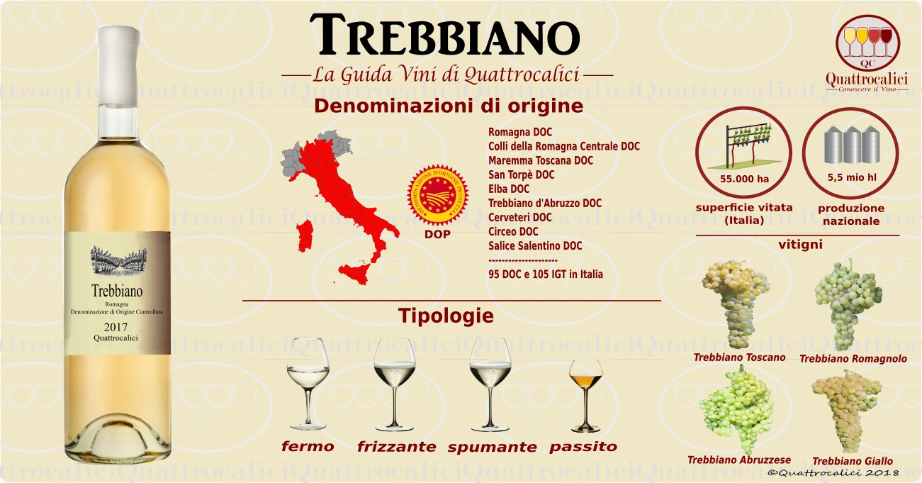 trebbiano-vini