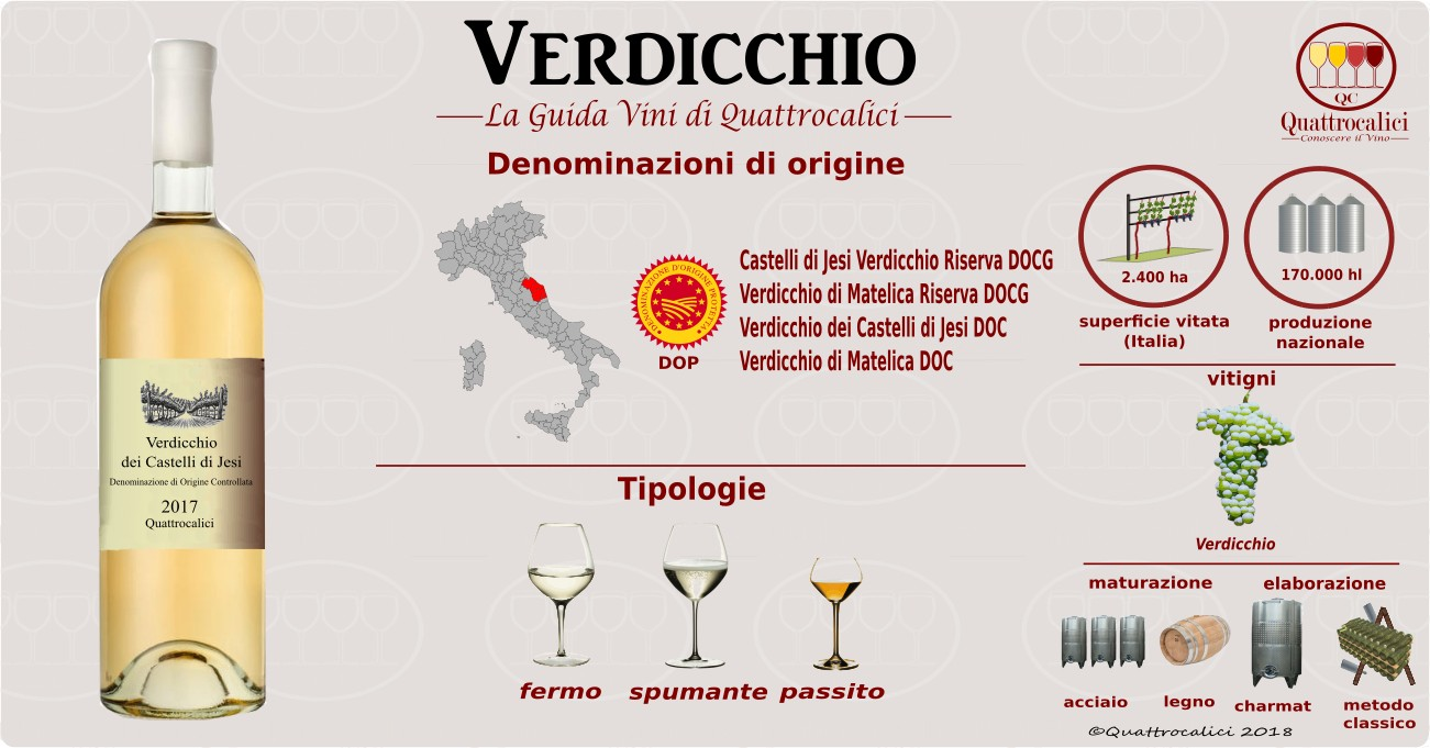 verdicchio-vini